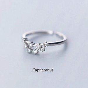 Sterling Silver Zodiac Resizable Ring-Capricorn